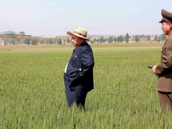 Trung Quốc hứa hẹn giúp Triều Tiên chống hạn hán ảnh 1