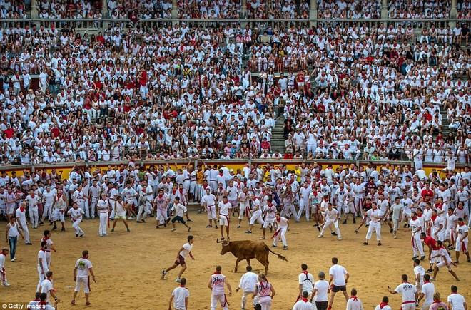 Những khoảnh khắc thót tim trong lễ hội bò tót ở Tây Ban Nha ảnh 10