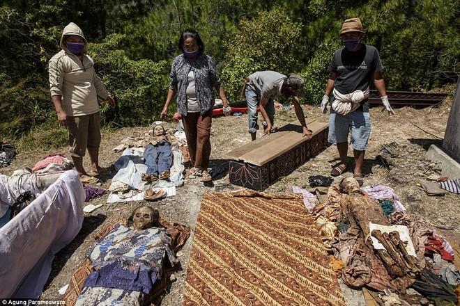 Rùng rợn nghi lễ tắm rửa và thay quần áo cho xác chết ở Indonesia ảnh 7