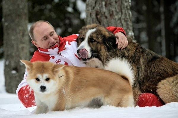 Ước mơ của bé gái Siberia thành hiện thực khi gửi thư cho Tổng thống Putin ảnh 3