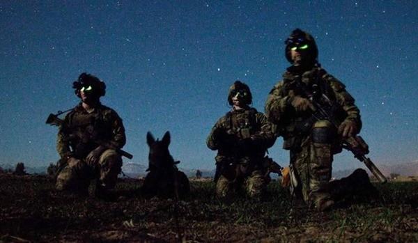 Điều ít biết về những chú chó nghiệp vụ Mỹ đi theo bảo vệ Tổng thống Mỹ ảnh 12