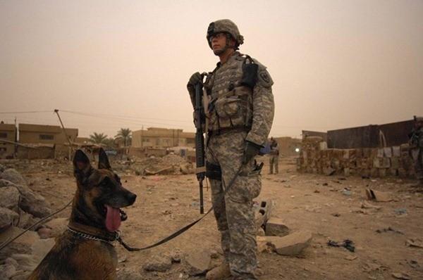 Điều ít biết về những chú chó nghiệp vụ Mỹ đi theo bảo vệ Tổng thống Mỹ ảnh 7