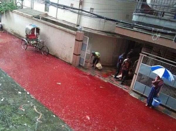 """Đường phố Dhaka ngập chìm trong """"dòng sông"""" máu"""
