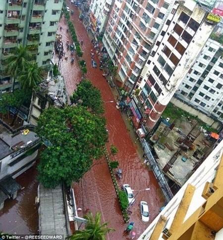 Máu gia súc cùng nước lũ biến đường phố Dhaka thành dòng sông máu