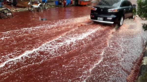 Nhiều người sẵn sàng lội chân trần qua dòng nước đỏ để ăn mừng thánh lễ