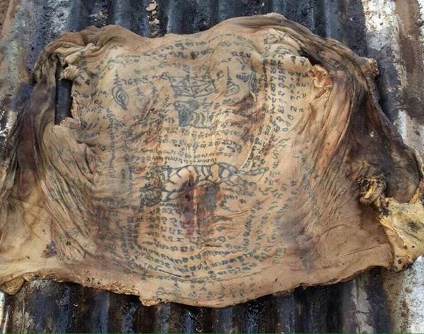Bộ da người chi chít chữ Phạn và có cả hình một con hổ