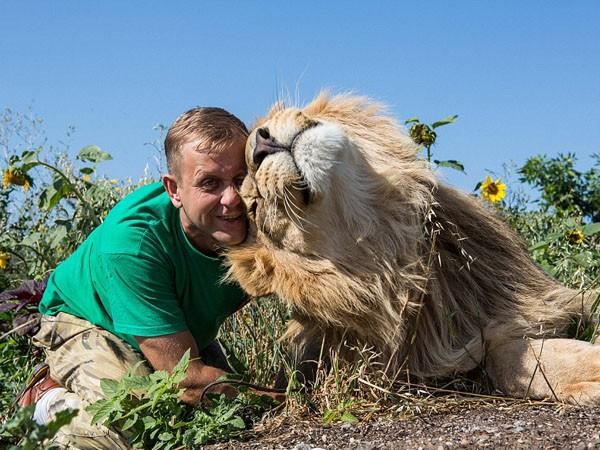 """Ngắm bộ ảnh """"siêu thực"""" về tình bạn đáng yêu của con người và sư tử ảnh 2"""