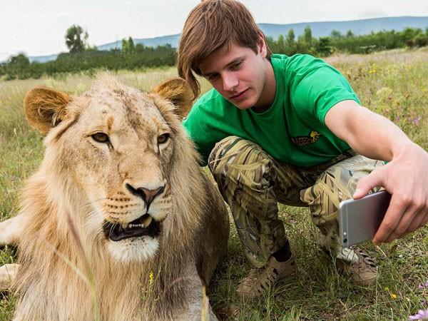 """Ngắm bộ ảnh """"siêu thực"""" về tình bạn đáng yêu của con người và sư tử ảnh 5"""