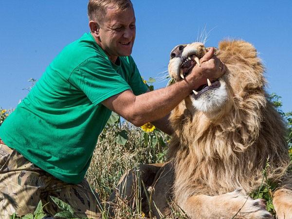 """Ngắm bộ ảnh """"siêu thực"""" về tình bạn đáng yêu của con người và sư tử ảnh 7"""