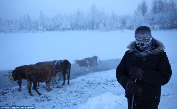 Ngôi làng lạnh nhất thế giới - nơi mất 3 ngày đế chôn cất người chết ảnh 2