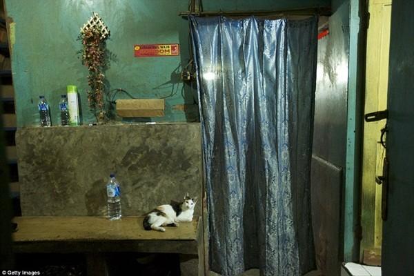Thế giới mại dâm dành cho tầng lớp thượng lưu ở Indonesia có những dịch vụ kỳ lạ