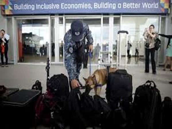 Chó nghiệp vụ được triển khai, đảm bảo an ninh cho Hội nghị APEC