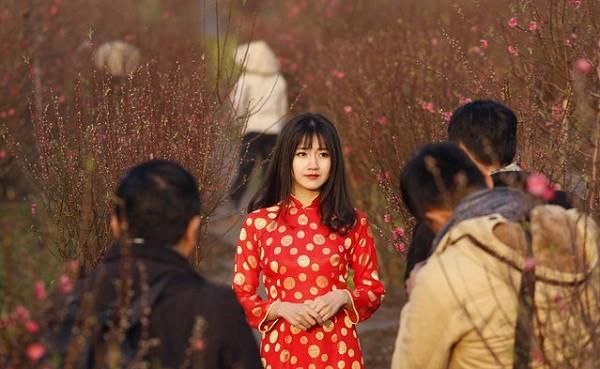 Thiếu nữ Việt tại vườn đào trong bộ ảnh của Reuters