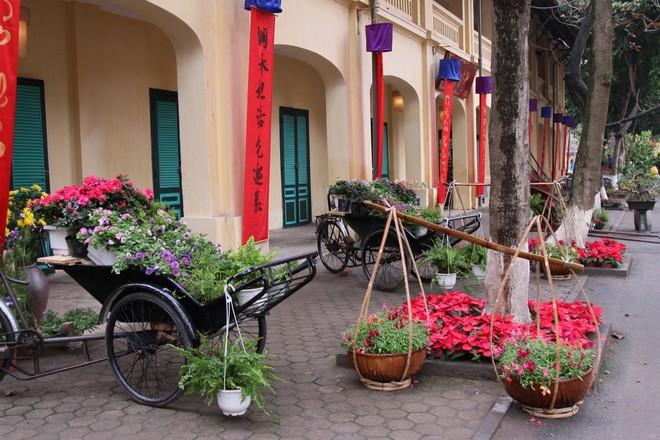 Hương vị Tết truyền thống ở Hoàng thành Thăng Long ảnh 1