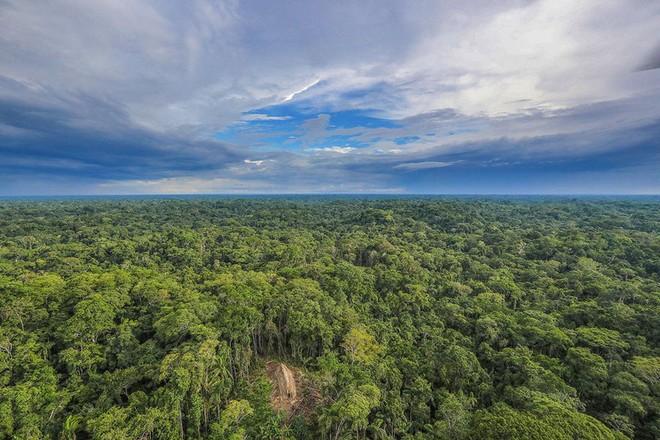Bộ lạc sống ở khu vực Amazon, cứ 4 năm lại di chuyển, thay đổi chỗ ở một lần