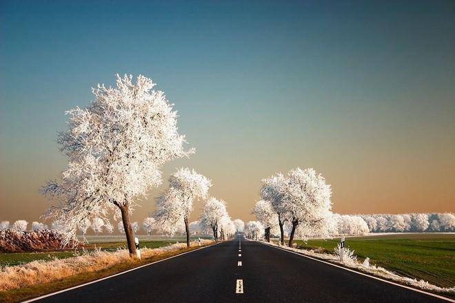 Mùa đông cũng mang một vẻ đẹp riêng.