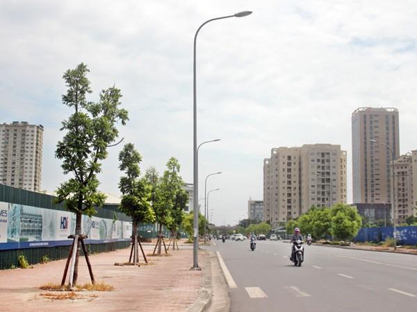 Hà Nội có thêm phố Mạc Thái Tổ, Trịnh Công Sơn ảnh 1