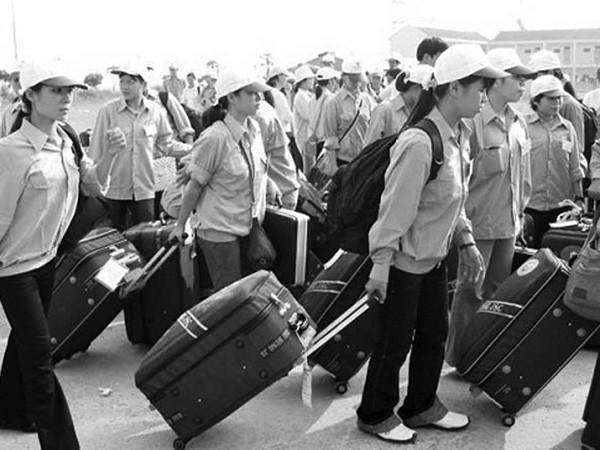 Thái Lan chính thức triển khai cấp phép cho lao động Việt Nam ảnh 1