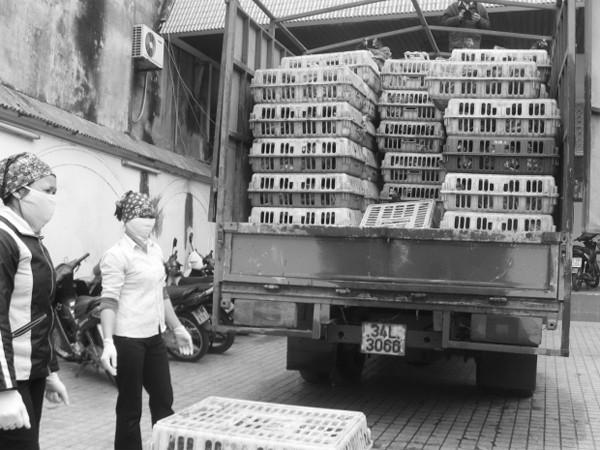 Việt Nam đã rất vất vả chống lại gia cầm lậu từ Trung Quốc tràn vào