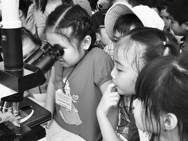 Trong kỳ nghỉ hè, thay vì nhồi nhét con vào các lớp học văn hóa, phụ huynh nên cho trẻ đi dã ngoại, trau dồi thêm kỹ năng sống