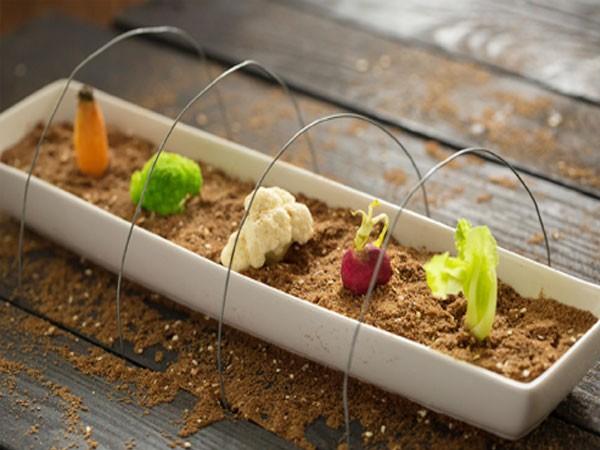"""Món """"Salad vườn rau"""""""