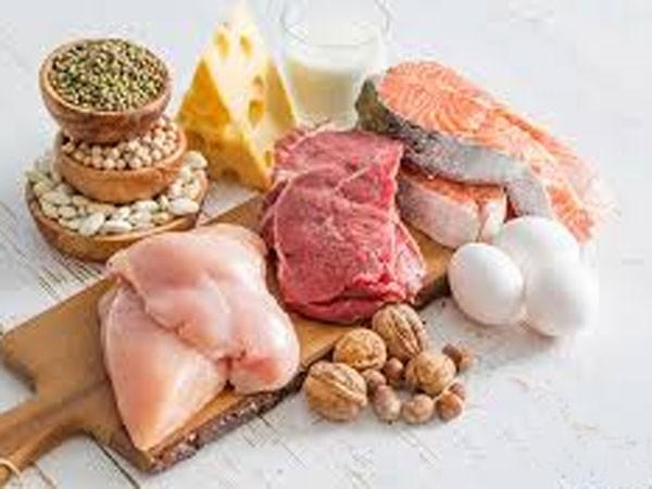 Cần bổ sung protein từ cả nguồn động vật và thực vật