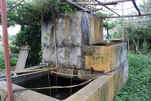 """Mặc dù rất gần với sông Hồng nhưng người nông dân ở Tuệ Viên vẫn bơm nước giếng khoan vào hệ thống lọc để đảm bảo rau được """"uống"""" nước sạch hoàn toàn"""