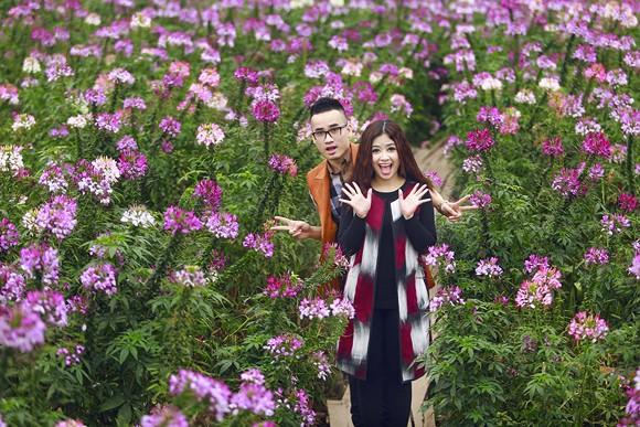 Cặp quán quân Hà Duy - Hoàng Yến lãng mạn giữa vườn hoa xuân ảnh 4