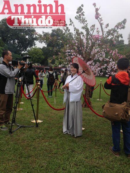 Thú vị với lễ hội hoa anh đào Nhật Bản 2015 ảnh 8