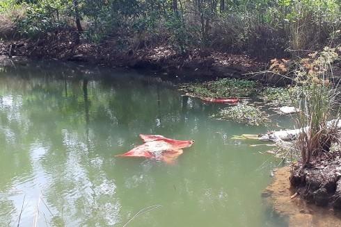 Ao nước nơi phát hiện thi thể hai bà cháu