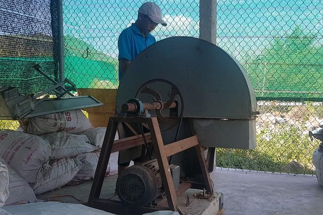 Bất ngờ với chiếc máy xay vỏ thông phục vụ trồng lan