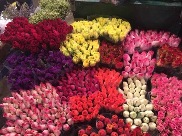 Hoa hồng với nhiều màu sắc cũng được người mua lựa chọn