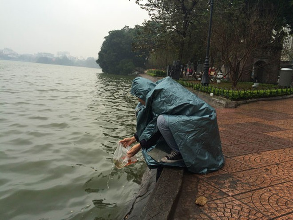 Người Hà Nội đội mưa lạnh thả cá chép tiễn ông Công, ông Táo ảnh 5