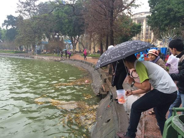 Người Hà Nội đội mưa lạnh thả cá chép tiễn ông Công, ông Táo ảnh 7