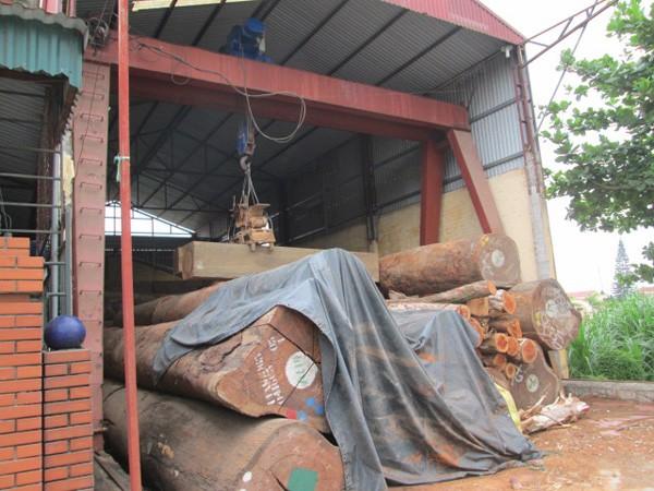 Bé trai 9 tuổi chết thương tâm, xưởng gỗ vẫn ngang nhiên hoạt động ảnh 2