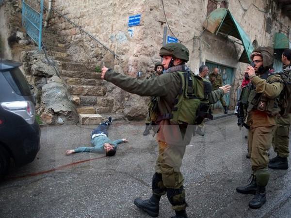 Thi thể một thanh niên Palestine bị binh sỹ Israel bắn chết sau khi cố dùng dao đâm một lính Israel tại thành phố Hebron ở Bờ Tây ngày 29-10 vừa qua - Ảnh: TTXVN