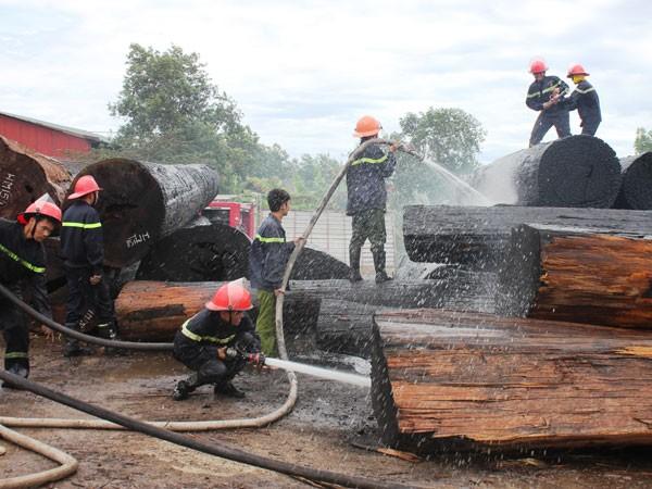Các chiến sỹ PCCC được huy động để khống chế ngọn lửa