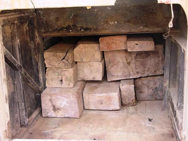 Hầm chứa gỗ được thiết kế kín đáo và tinh vi