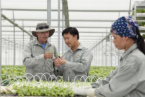 VinEco sẽ trực tiếp đào tạo và hướng dẫn các hộ nông dân có nhu cầu về quy trình sản xuất sạch; Hỗ trợ công nghệ, kỹ thuật và giống; Kiểm soát chất lượng trong quá trình sản xuất và trước thu hoạch