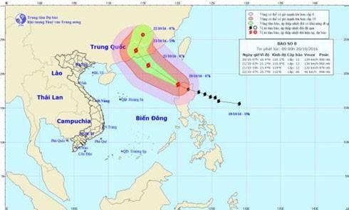 Vị trí và đường đi của bão số 8