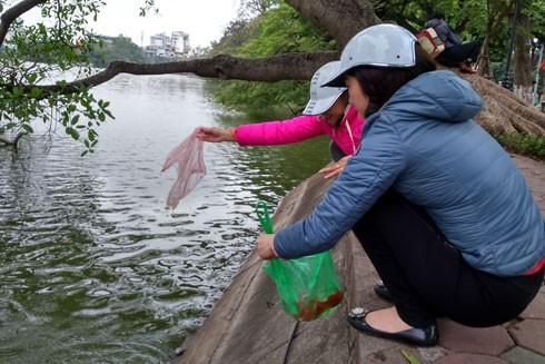 Hà Nội: Thả cá chép tiễn ông Công ông Táo trong thời tiết đẹp