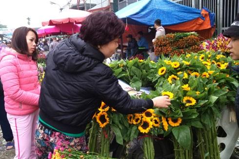 Hoa hướng dương cũng là loại hoa bán chạy