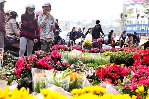 Chợ hoa Hoàng Hoa Thám tấp nập không kém chợ hoa Hàng Lược, Quảng An trong ngày cận Tết