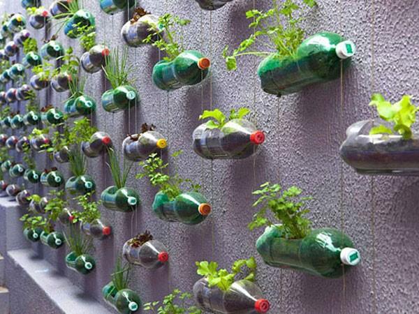 15 cách tái sử dụng chai nhựa siêu sáng tạo