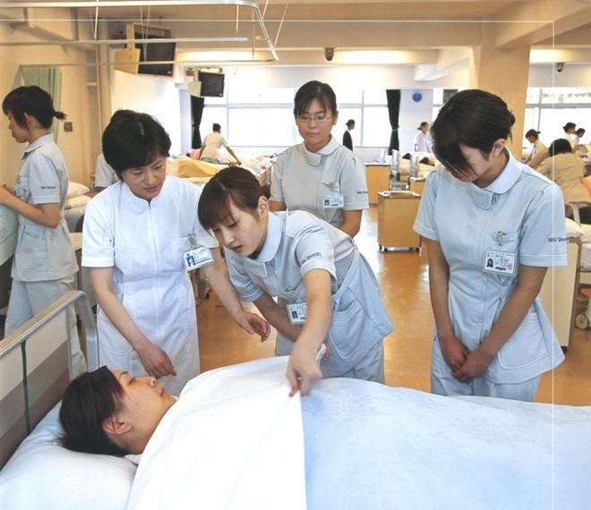 Nhật Bản trở thành quốc gia tiếp nhận nhiều lao động Việt Nam nhất