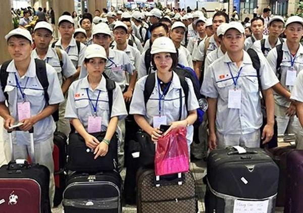 Người lao động đạt yêu cầu qua kỳ thi tiếng Hàn phải hoàn thiện hồ sơ theo hướng dẫn
