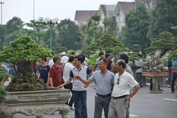 Lễ hội sinh vật cảnh lớn nhất Việt Nam tại Vinhomes Riverside ảnh 5