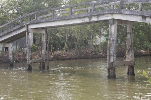 Cầu Cựa Gà, ấp 8, xã Tân Lộc bắc qua sông Cựa Gà ở huyện Thới Bình, tỉnh Cà Mau, bị bong tróc bê tông, lòi cả sắt ra ngoài, phải dùng cây gỗ chống đỡ.