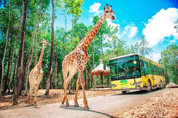 Công viên chăm sóc và bảo tồn động vật hoang dã tại Vinpearl Phú Quốc