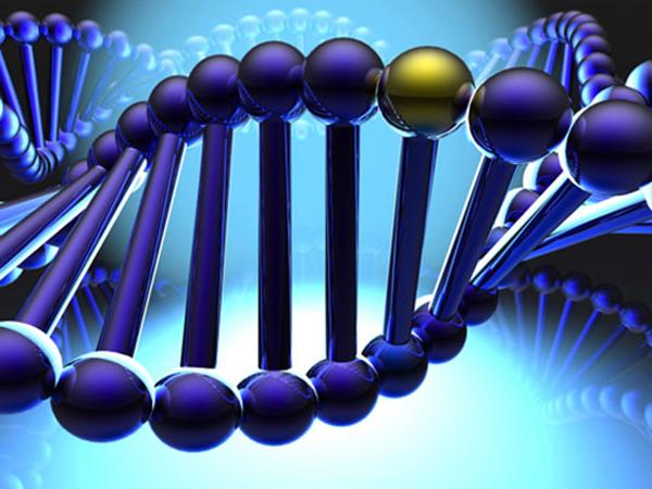 Các nghiên cứu về gen giúp đưa ra các phát hiện, cảnh báo, và điều trị sớm một số bệnh, cũng như giúp phát triển các phương pháp chẩn đoán và điều trị bệnh hướng đến từng cá nhân